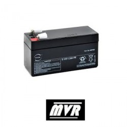 Batterie de secours Came 3199PNP1212